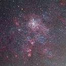 NGC2060 and surrounds,                                Djt