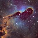 Elephant Trunk Nebula IC1396,                                chuckp