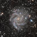 NGC 6946 - Fireworks Galaxy,                                Derryk
