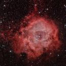 NGC 2244 Rosette,                                Ulli_K