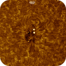 Sunspot AR2734, Colored, Inverted, HA, 03-06-2019,                                Martin (Marty) Wise