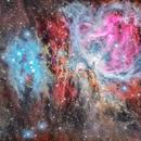 Great Orion Nebula,                                Alessio Pariani