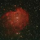 NGC2175,                                JoeRez