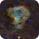 NGC7288 - The cosmic question mark in SHO,                                Cfosterstars