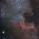 NGC7000 The Cygnus Wall. Summer is coming...,                                Camarone