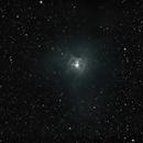Iris nebula,                                Francesco