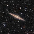 NGC891,                                Astrowood