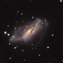 NGC 2146,                                Gary Imm