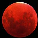 Eclipse à Cahuzac sur Vère,                                GUYM