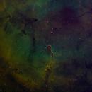 IC1396 - Elephant's Trunk Nebula,                                Doug Gray