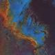 NGC 7000,                                Tolga