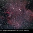 North America Nebula (NGC 7000),                                Valentin JUNGBLUTH