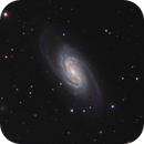 NGC 2903 - three processing revisions,                                rhedden
