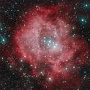 Rosette Nebula,                                Jessi Wenke