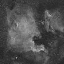 North America Nebula and its friends,                                Christophe Perroud
