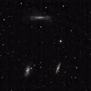 Leo triplet. M65, M66, NGC 3628,                                Anton Khaimi