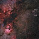 Cygnus - Wide Field 50mm,                                Robert Eder