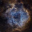 Rosette nebula - narrowband combination (Ha-OIII-SII),                                Vittorio