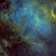 NGC6997 Section of North America Nebula,                                Albert  Christensen