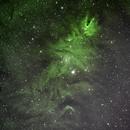 Christmas Tree Nebula,                                Kurt Bozkurt