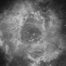 La rosette - NGC 2237,                                Le Mouellic Guillaume