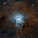 NGC 7023 Iris Nebula Closeup,                                Jeff Weiss