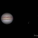 Jupiter - 6/1/2019,                                Damien Cannane