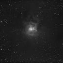 Iris Nebula (NGC7023),                                Jose Carballada