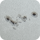 Solar sunspot group AR2781.,                                Sergei Sankov