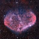The Crescent Nebula,                                Dick Newell