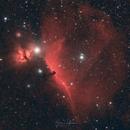 Horsehead and Flame Nebula,                                Björn Hoffmann