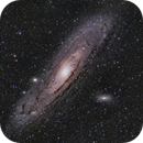 M31 in OSC,                                Greg Watkins