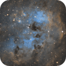 IC 410, The Tadpoles H(SHO) Variant,                                Madratter