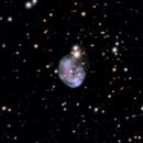 The Fetus Nebula (NGC7008),                                PepeLopez