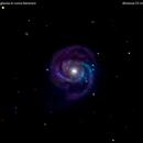 m100 galassia in chioma berenice                                                   distanza 55 miloni  A.L.,                                Carlo Colombo
