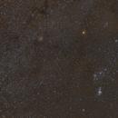 Orion Region Widefield,                                Jonathan W MacCollum