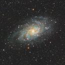 Triangulum Galaxy,                                Nico Augustin