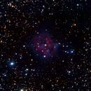 IC IC 5146, Cocoon,                                PJ Mahany