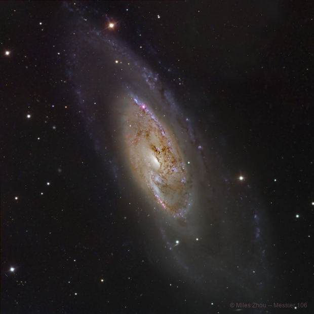 Messier 106 Spiral Galaxy by Liverpool Telescope,                                Miles Zhou