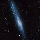 The irregular Galaxy NGC 55,                                Jaime Felipe Ramírez Narváez