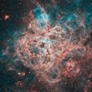 NGC2070 The Tarantula Nebula in HOO,                                Kevin Parker