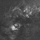 Seven Hours of the Cygnus Region in H-Alpha,                                William Gottemoller
