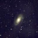 M81 (Bode) first test,                                Paul G.