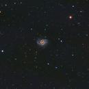 NGC 4535 The Lost Galaxy, NGC 4526 and NGC 4519,                                John Richards