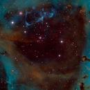 NGC2237-Narrow-Band,                                Ron Machisen