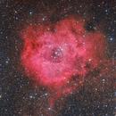 Rosette nebula,                                Amir H. Abolfath