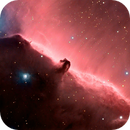 B33 The Horsehead Nebula,                                APshooter