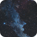 NGC 1909 Witchhead Nebula,                                Gabriel Siegl