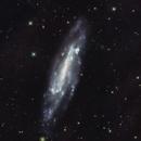 NGC 4236  Galaxie dans la constellation du Dragon,                                Roger Bertuli