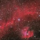 Seagull Nebula IC2177 in LHaRHaGB,                                TWFowler